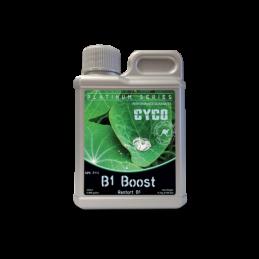 CYCO B1 BOOST 250ML