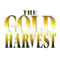 Gold Harvest